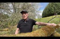 Témoignage du Berger | Combien de mouton noir à mes côtés ? Cet Homme parle …